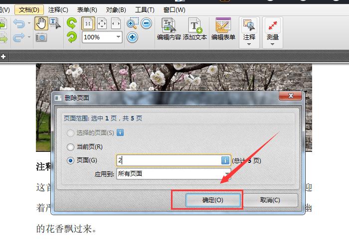 输入删除页码